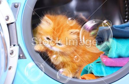 Lavatrici, consigli per gli acquisti e utilizzo responsabile